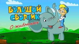 БОЛЬШОЙ СБОРНИК О ЖИВОТНЫХ - Все серии подряд! - Познавательные мультфильмы для детей! :)