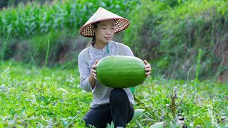Use watermelon to make some Chinese delicacies