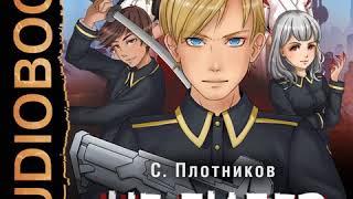 Сергей Плотников – Не лидер. Аудиокнига