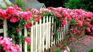 Забор для дачи(Видео-блог о дизайне, архитектуре и стиле. Идеи для тех кто обустраивает свой дом, квартиру, дачу, садовый..., 2013-09-14T17:52:45.000Z)