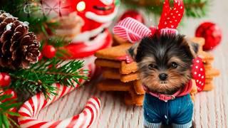 Поздравления с Новым годом Собаки 2018 К новому году