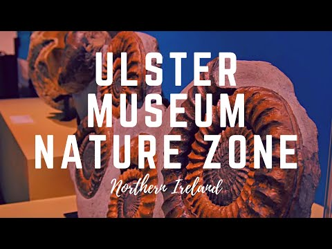 ULSTER MUSEUM NATURE ZONE-Belfast Northern Ireland. Belfast Attractions to check out!
