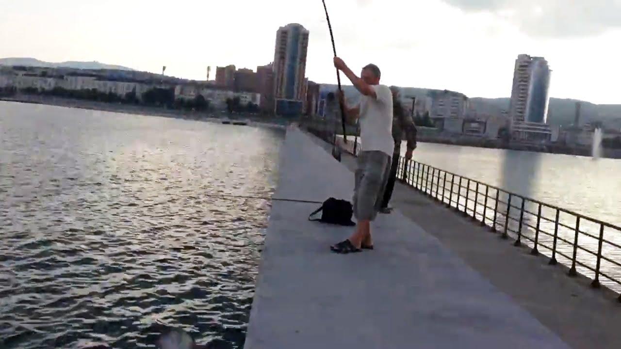 Мужик поймал ската на молу в Новороссийске