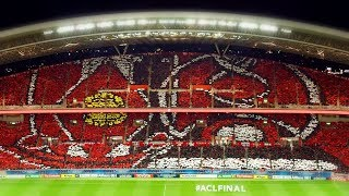 AFC Champions League FINAL 2017 Choreography/Visual support by URAW...
