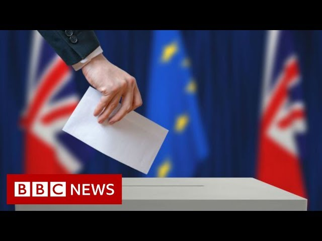 What's at stake in the EU elections - BBC News