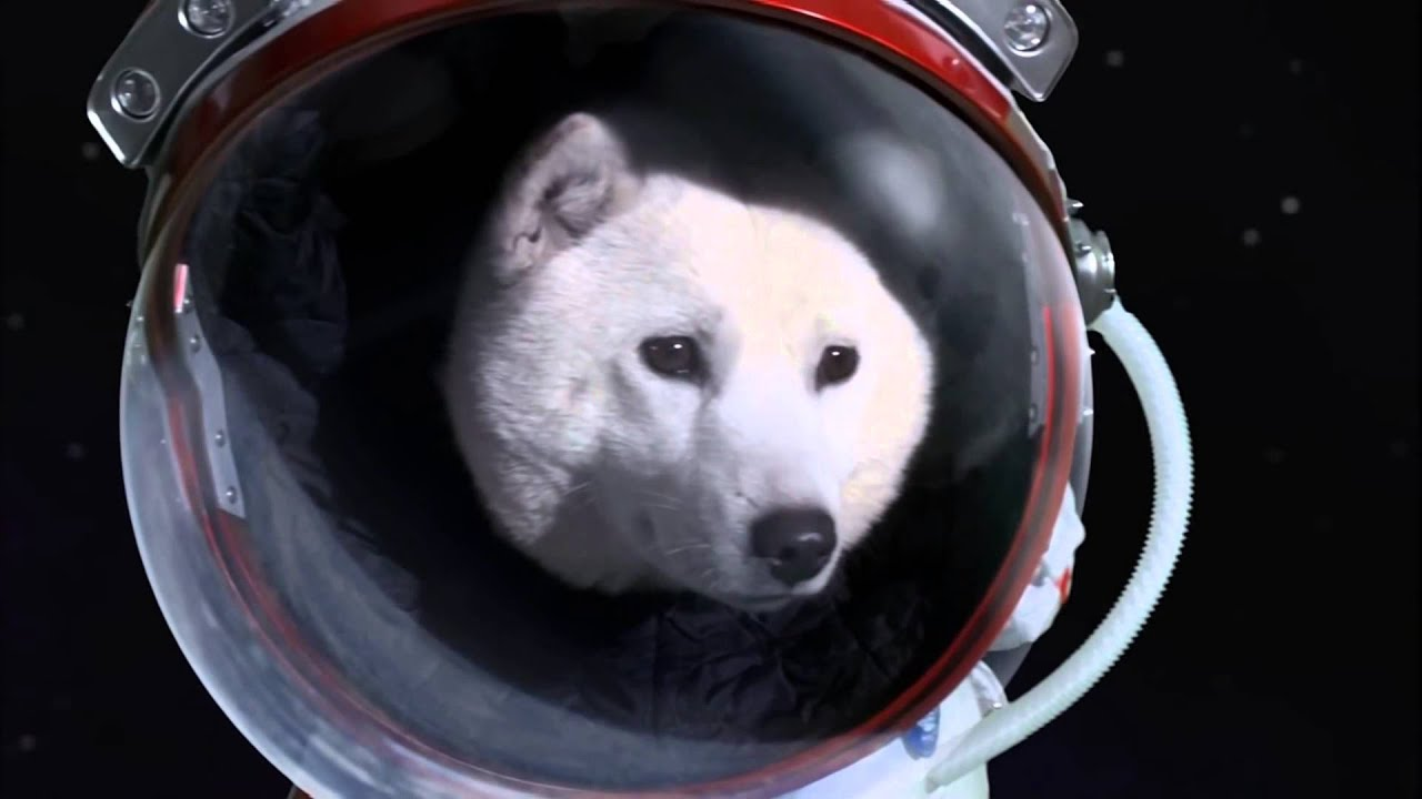 Dogecoin - To The Moon (Unfinished video) - YouTube