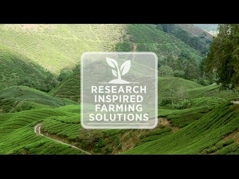 School of Computing, Engineering & Maths: Research Inspired Farming Solutions