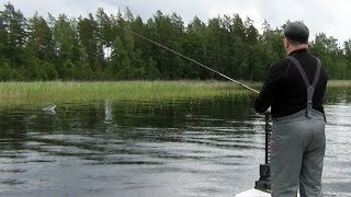 Рыбалка между дождей. Ловля щуки.