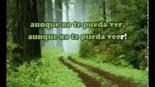 Aunque No Te Pueda Ver  - Alex Ubago (karaoke).flv