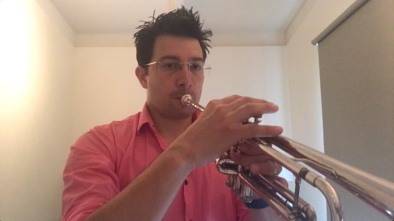 Chapter 1 - Roll In #1 - Playing The Trumpet - The 3 Zones Of ...