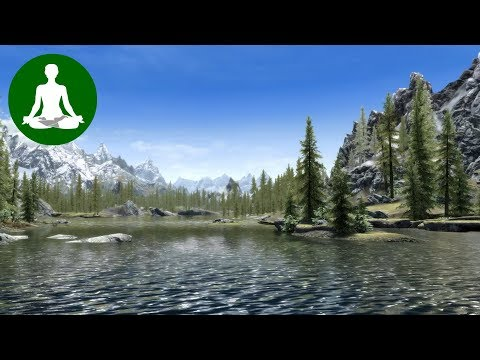 Ambient Sound Meditation 🎧 Flowing Water (Skyrim Ambience | Forest, River & Bird Sounds)