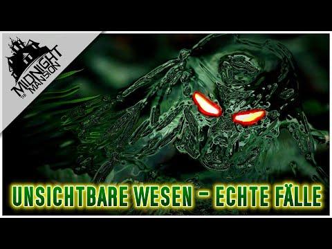 """Begegnungen mit """"Predator"""": Sichtungen von transparenten Wesen (Teil 1)"""