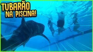 TUBARÃO NA PISCINA MAIS FUNDA!! ( MINI GAME NOVO )  [ REZENDE EVIL ]
