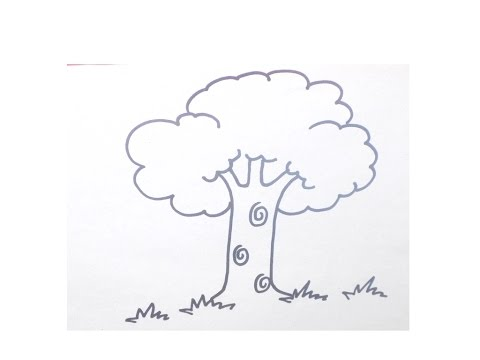 easy drawing tutorial how to draw tree for beginners tree drawing