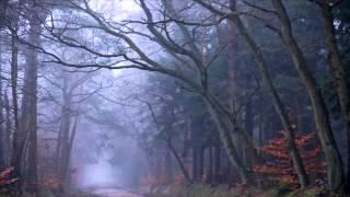 Ulver - Capitel I: I Troldskog Faren Vild