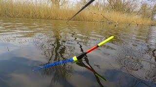 РРЫБАЛКА НА КАРАСЯ И ПЛОТВУ Проснулся родимый Весна полным ходом My fishing КАРАСЬ НА ПОПЛОВОК