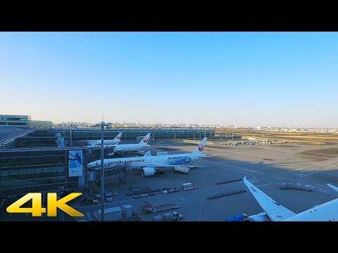 Walking in Haneda Airport, Tokyo part2【4K】