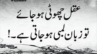Best Collection Of Urdu Quotes| Urdu motivational  Quotes|Achi Batain|Peyari BateinI