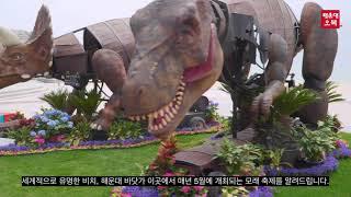 해운대 모래 축제 Busan Haeundae Sand …