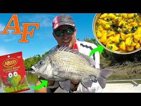 Devilled fish recipe Bream and Barramundi Snake Lollie Catch and Cook EP.407