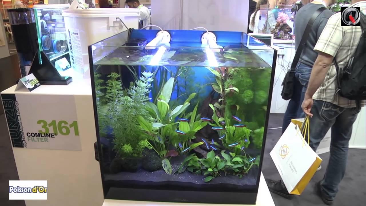 aquarium pour salon aquarium pour salon with aquarium pour salon cool aquarium pour salon with. Black Bedroom Furniture Sets. Home Design Ideas
