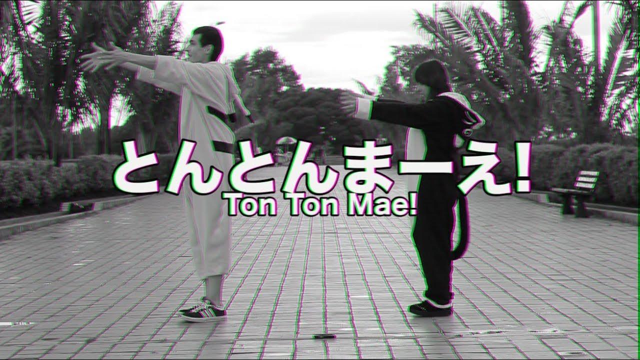 【 さくら ✩ BOTONET 】Tonton Mae! とんとんまーえ!【踊ってみた】 HD