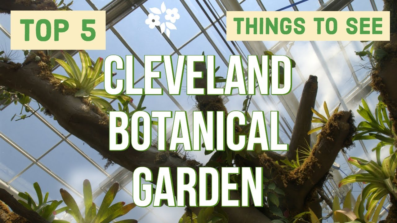 cleveland botanical garden 5 best things to see here - Botanical Garden Cleveland