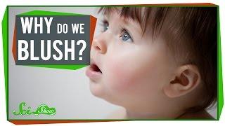 Why Do We Blush?