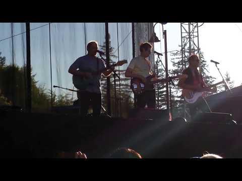 THE BOX TOPS(LIVE VIDEO CLIP)-