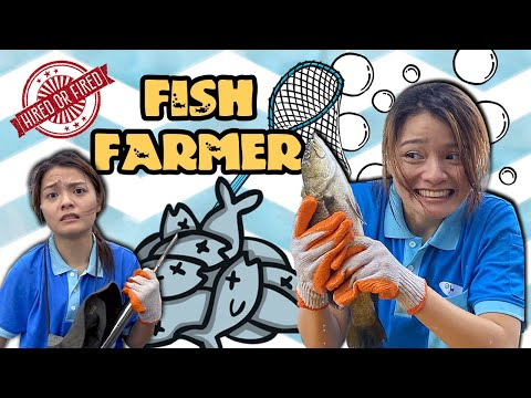 Hired Or Fired: Fish Farmer For A Day