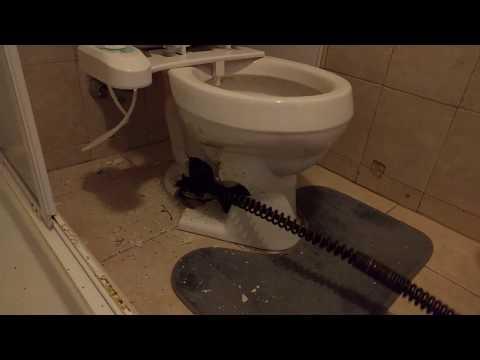 Plumber's snake breaks through toilet