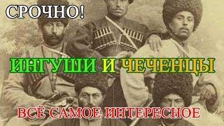 Чем отличаются чеченцы от ингушей, один народ два государства
