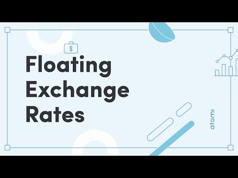 Economics: Floating Exchange Rates