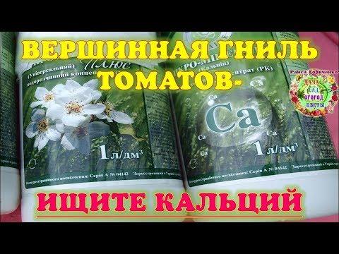 Вершинная гниль томатов - ищите кальций