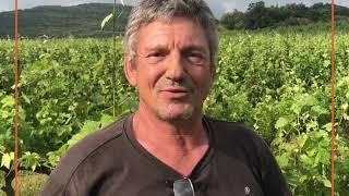 Présentation vignerons