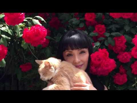 君枝と猫の花