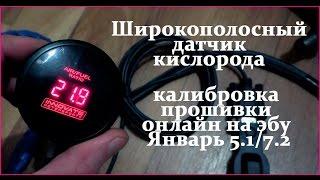 ШДК LC-1 и калибровка прошивки онлайн на эбу Январь 5.1/7.2