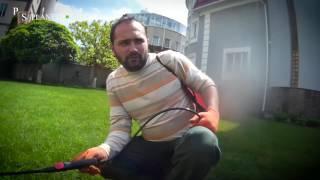 видео Рулонный газон – лучший способ озеленения территории