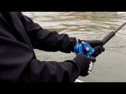 How to Sturgeon Fish
