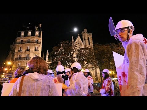 Action L214 - Halloween Paris 2017