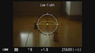 Nikon Z 7 Ver2.00 ローライトAF