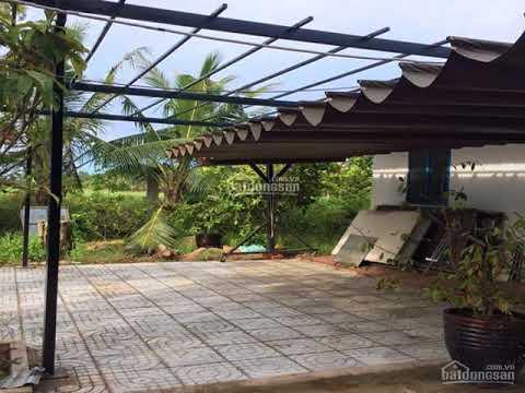 Cần Bán Nhà Vườn 1000M2, Tỉnh Lộ 10, Huyện Bình Chánh, Giá: 1Tỷ750