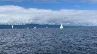 Sebastion's Race Day on the 31st Malaspina Regatta