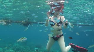 フィリピンのセブでの海水浴中、シュノーケルでの熱帯魚に水着ビキニで...
