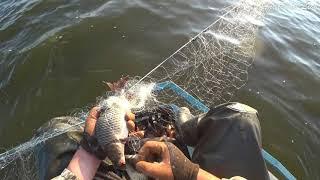 Рыбалка на СЕТИ или промысловый лов в Сибири Есть такая работа рыбу ловить Лето 2021