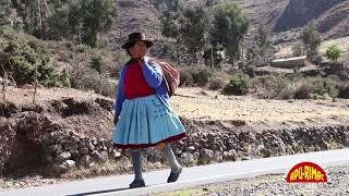 LOS MANANTIALES DEL PERU Me olvide tu nombre (Huayno Ayacucho)