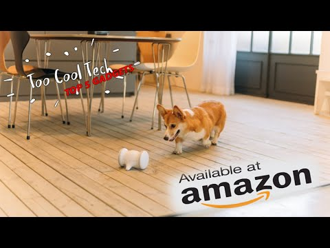 5 Futuristic Gadgets For Your Pet On Amazon! 2020