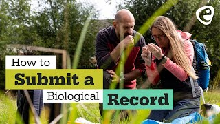 How to submit a Biological Record (3 of 3)