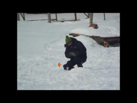 Платная рыбалка в Пирогово (КОРГАШИНО) - YouTube