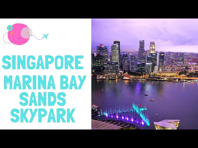 Marina Bay Sands Skypark - The ultimate view of SINGAPORE